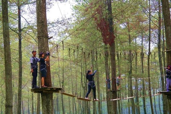 Bandung Treetop Adventure Park Lembang