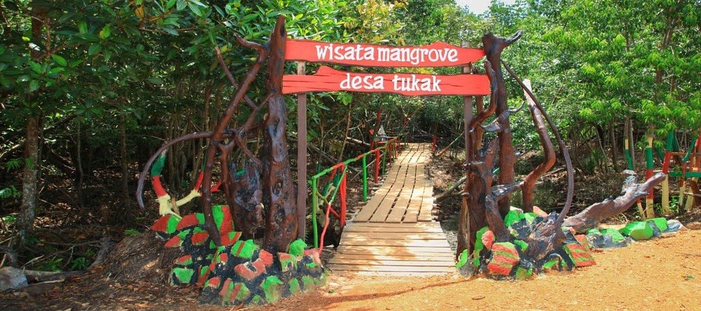 Hutan Mangrove Desa Tukak, Toboali - Bangka Selatan