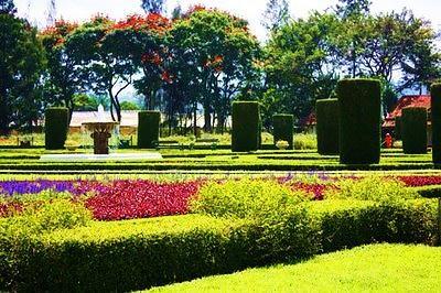 Taman Bunga Cihideung Bandung